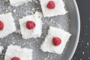 Kokos-Pudding-Schnitten ohne Zucker